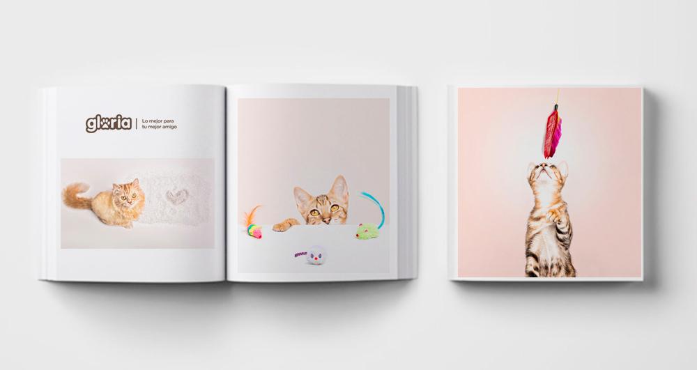 Creaciones-Gloria-Catálogo-2017gatos