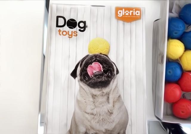 Dog Toys Gloria