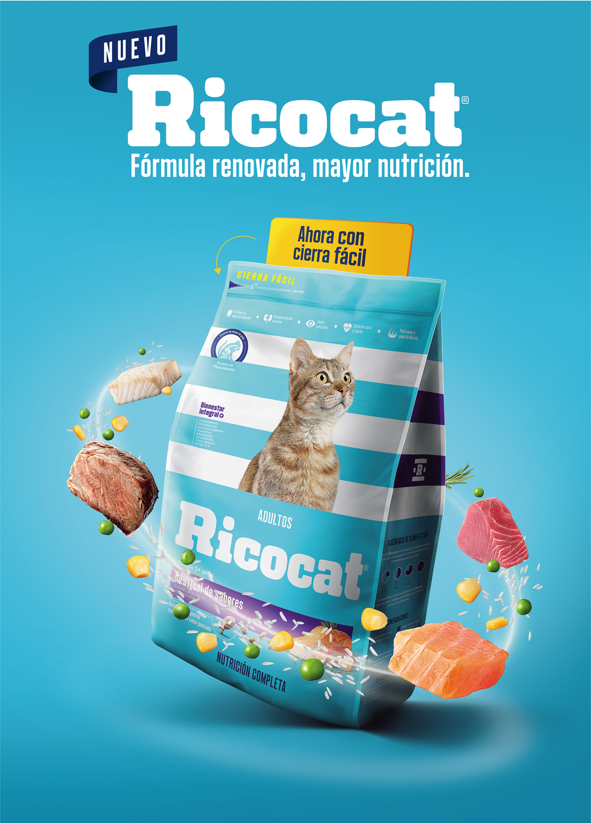 Branding and Packaging Design ricochet perú