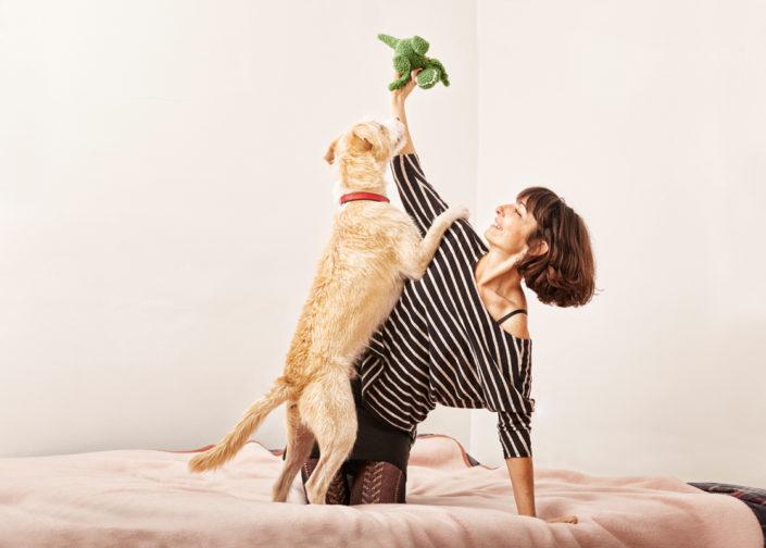 Fotógrafo de perros para Gloria Pets