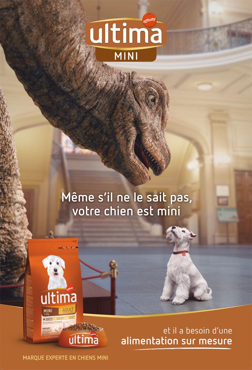 Affinity Dino grafica