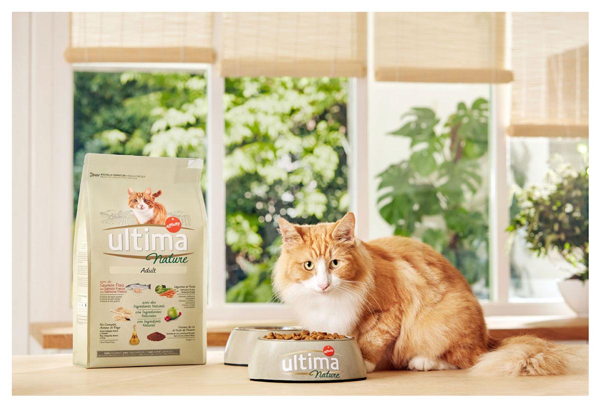 gato-ultima-nature-affinity