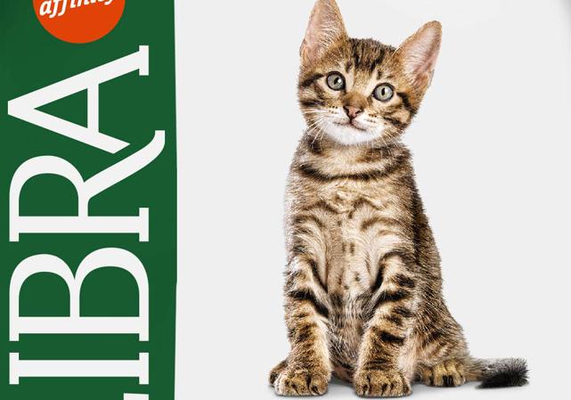 Libra | Gato