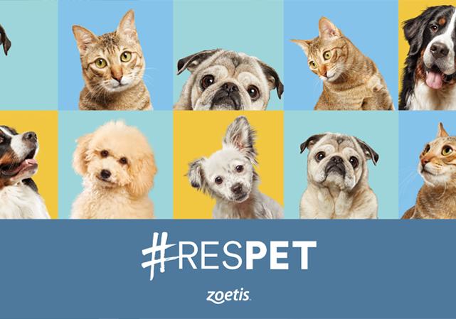 Zoetis | Respet